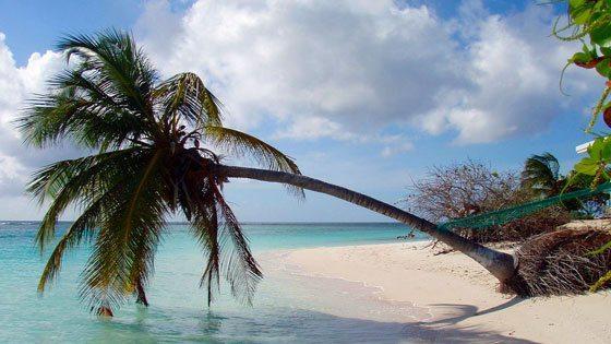 Bild vom Strand von Anegada