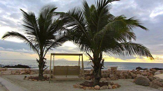 Bild einer Schaukel unter Palmen auf Sint Maarten