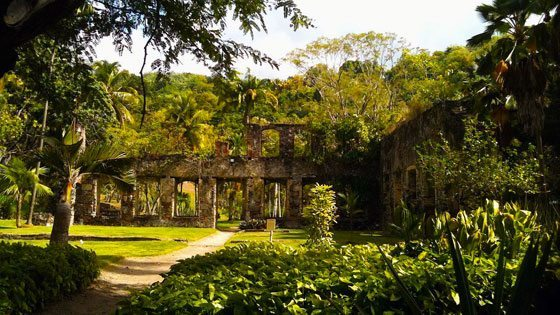Bild von Ruinen bei St. Anne auf Martinique