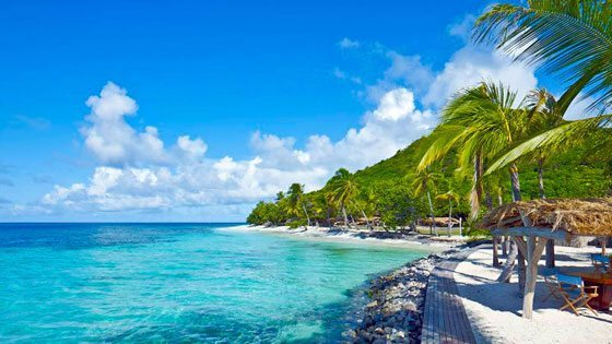 Bild vom Ausblick am Strand auf Petit St Vincent